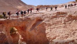 """Conferenza """"A piedi in Terra Santa, da Acri a Gerusalemme: un percorso nella storia e nella religione"""" a cura di Tiziana Grigoletto Venerdì 13 aprile 2018"""